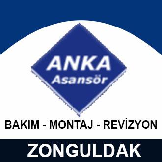 Anka Asansör